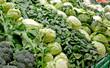 Cavoli, verze, broccoli, cime di rapa e spinaci