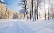 morning in Winter park