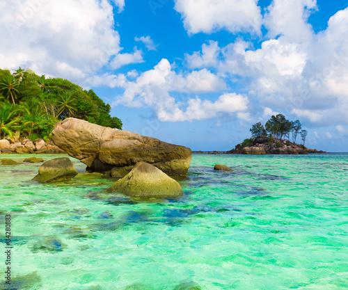 Fototapeten,palme,steine,fels,korallen