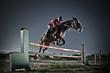 Fototapeten,ritt,pferdesport,springreiten,reiter
