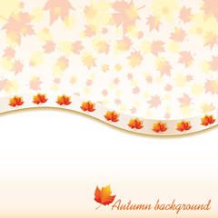 Autumn background with maple leaves, vector illustration