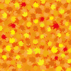 Autumn seamless background with maple leaves, vector