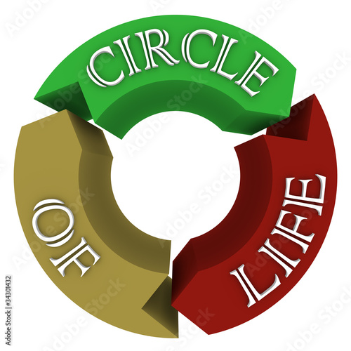 Circle of Life Arrows in Circular Cycle Showing Connections