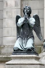 Figura aniłoa