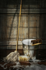 Mop with bucket and scrub brushes