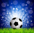 vector soccer football on grass, on a blue background with rays