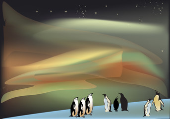 penguins under aurora illustration