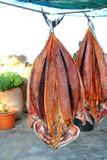 bonito tuna salted dried fish Mediteraranean sarda poster