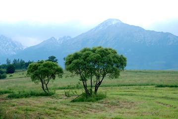 Mountains landscape, High Tatras, Slovakia