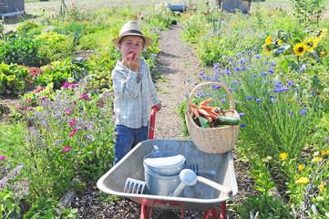 Ein junger Gärtner