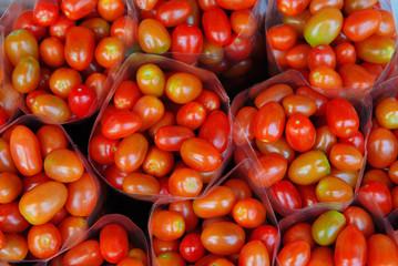 Organic Eggplants