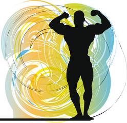 Male body builder vector illustration.