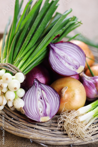 different onion family vegetables