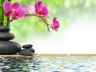 orchidea i czarne kamienie do spa