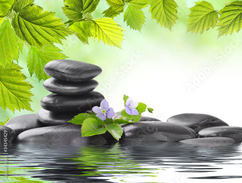 Fototapeten,steine,zen,wasser,kurort
