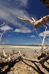 waigeo beach #4