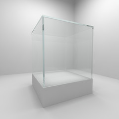 Empty glass showcase
