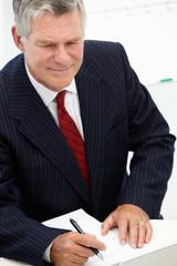 Senior businessman in meeting
