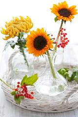 Sunflowers and chrysanthemum