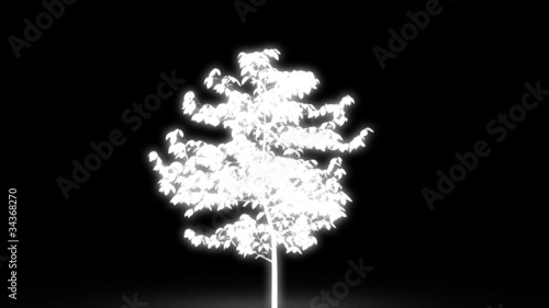 glowing tree growth