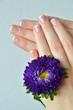 Maniküre und Blüte