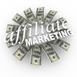 Affiliate Marketing Referral Network Money Generating Plan