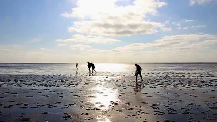Familie wandert im Wattenmeer