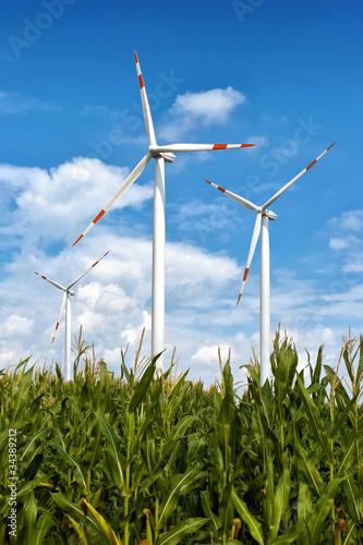 Zdjęcia na płótnie, fototapety, obrazy : grüne energie