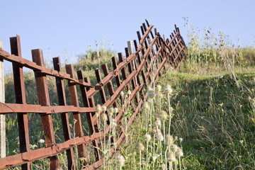 old iron fence