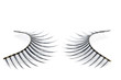 fashion eyelash
