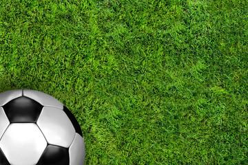 Fussball auf Rasen / ball on soccer field