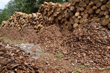 Holzstämme bereit zum Transport