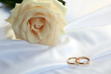 Wedding rings and a tea rose
