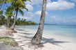 Samana / beautiful beach