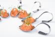 Gourmethäppchen mit Lachs und Frischkäse