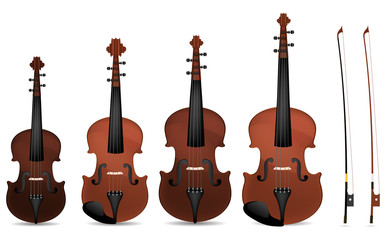 collection of classic violin isolated on white background