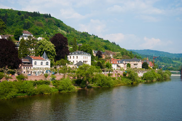 Neckar river and Heidelberg coastline