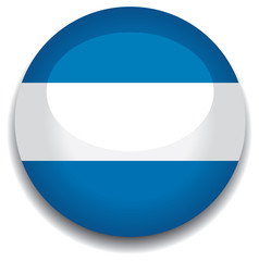 argentina flag in a button