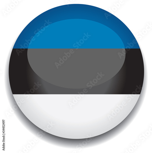 estonia flag in a button