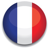 france flag in a button