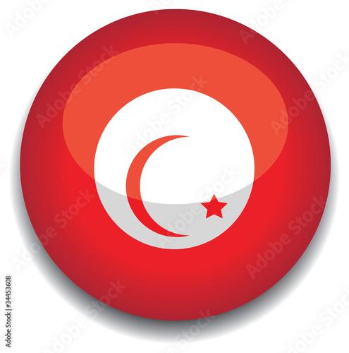 tunisia flag in a button de jameschipper fichier