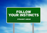 Green Road Sign - Follow Your Instincts poster