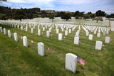 Headstones and Flags at National Cemetery poster
