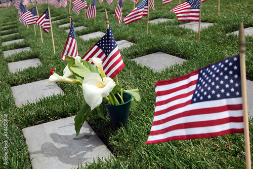 American Flags at National Cemetery - 34458848