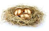 Fototapety golden eggs in nest isolated on white