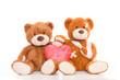 zwei bären mit herz