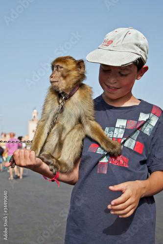 Poster Marrakech : Dresseur de singe Magot