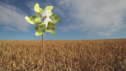 moulin a vent / jouet dans un champ de ble