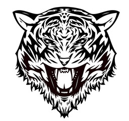 Tiger aggressive (vector)