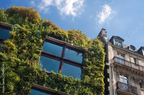 façade végétale - Musée Branly